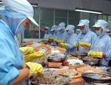 vietnam enjoys strong growth in shrimp exports to rok