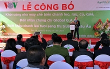 work begins on vnd200 billion fruit and veg processing plant in son la