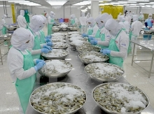 switzerland imports over 50 percent shrimp from vietnam