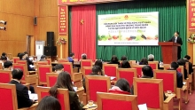 conference discusses vietnamese farm exports potential in china