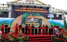 hoa binh hosts citrus fruit festival and agricultural fair