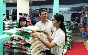 festival honors vietnamese rices position