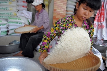 cambodian economy to remain robust in medium term