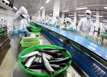 vietnam targets us 10 billion from aquatic exports in 2019