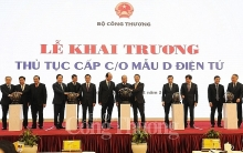 vietnam launches procedures to issue e co form d for export goods