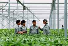 investment in high tech agriculture growing
