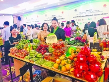 hanoi a pioneer in linking supply with demand for goods