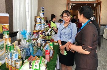southern exposure mekong delta provinces boost domestic goods