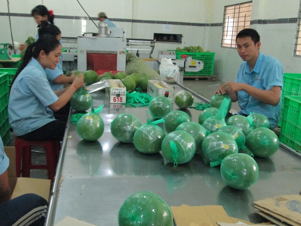 vietnamese goods reach out to global markets despite pandemic