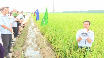 hanoi boosts agricultural promotion