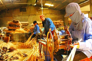 nghe an province boosts rural industries
