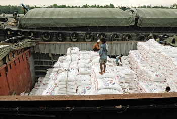 bright outlook for vietnams 2020 rice exports