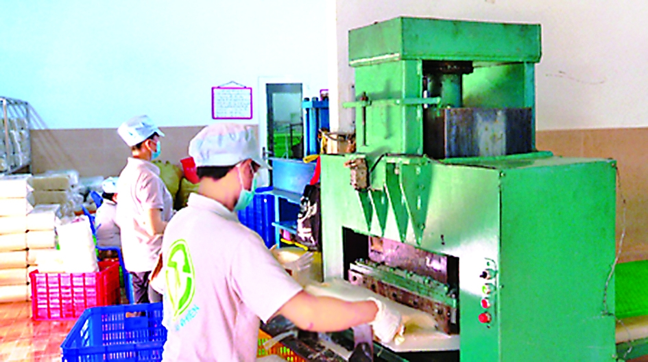tay ninh automates rural industrial production