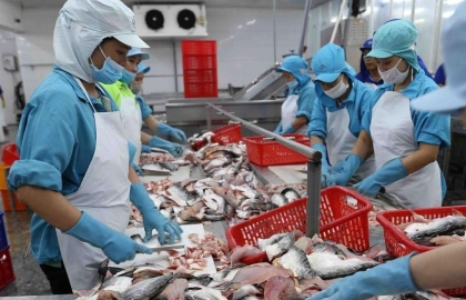 vietnamese firms discover ins and outs of evfta rules of origin