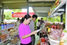 tuyen quang model promotes sale of vietnamese goods