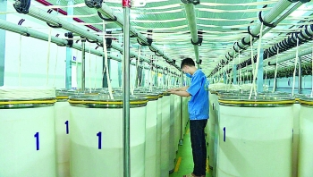 ninh binh province industry promotion boosts productivity