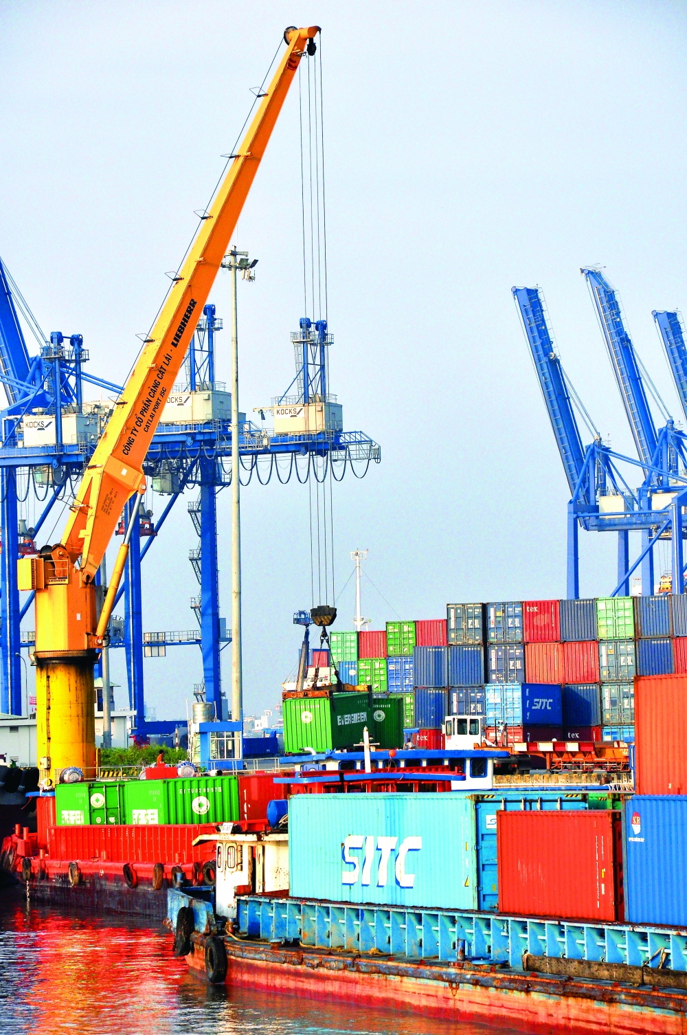 initial results of cptpp implementation in vietnam surpass expectations