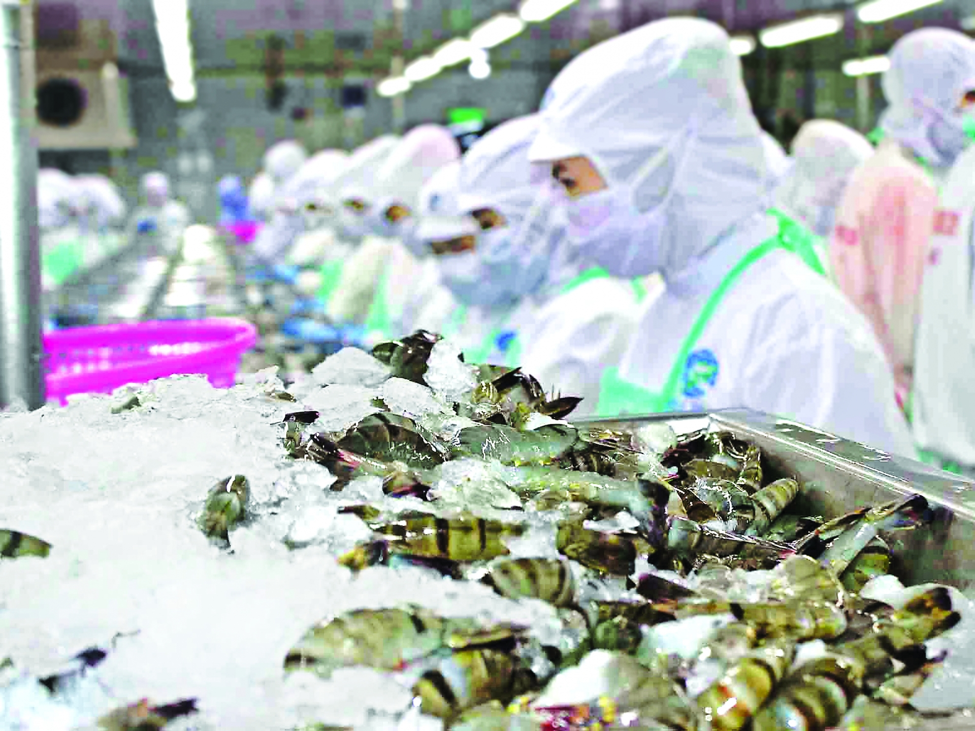 cptpp boosts vietnamese exports to canada mexico