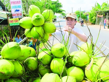 green xiem coconut has its own brand