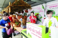 hanoi provides market for food grown nationwide