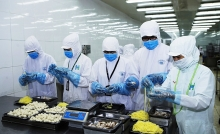 investors develop taste for vietnams food processing industry