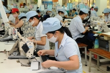 hanoi facilitates private economic growth