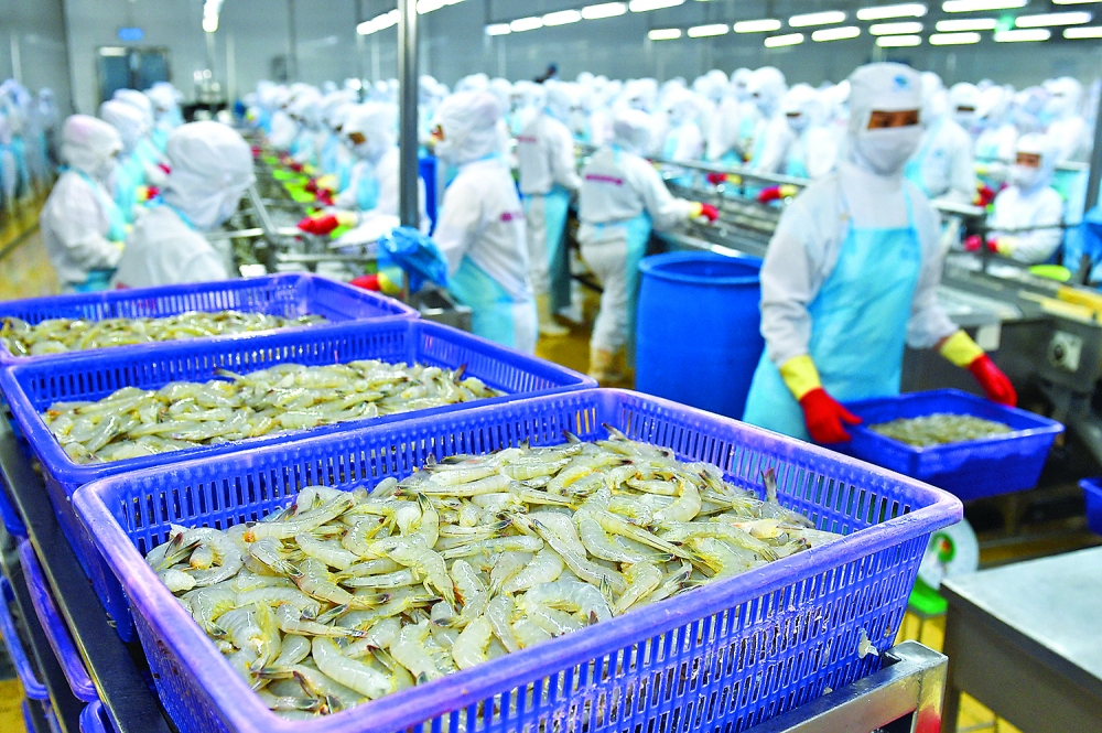 chinas growing hunger for vietnamese seafood