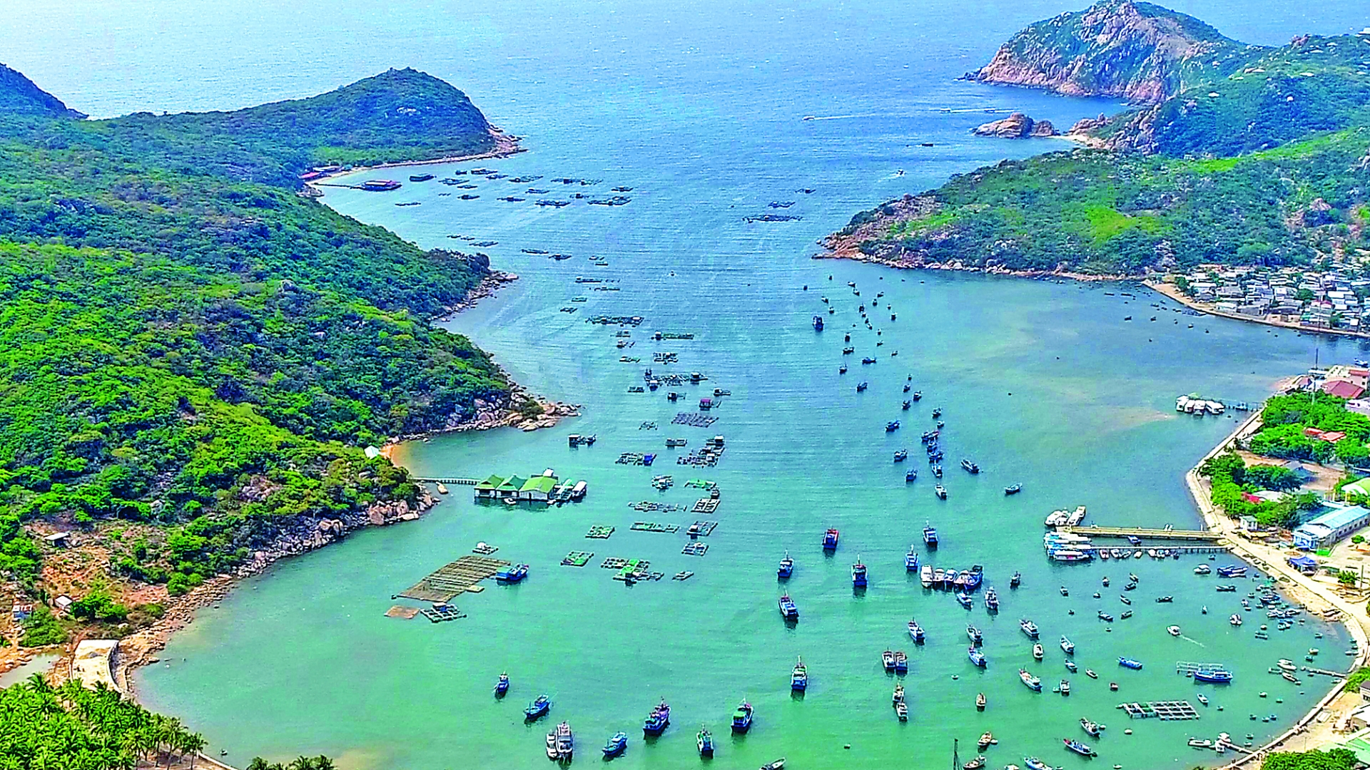 ninh thuan province offers opportunities for investors