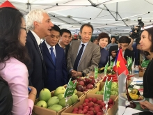 hanoi promotes vietnamese produce in europe