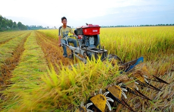 new top level coordinating body to provide boost for mekong delta provinces