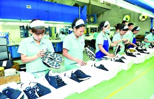 vietnam makes most of newly enacted uk tariff preferences