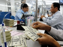 enterprises seek exchange rate fluctuation measures