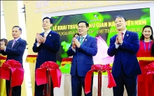 vietnamese goods wow chinese consumers at caexpo