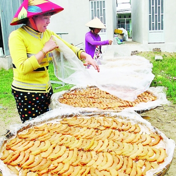 ca mau province industry promotion increases business efficiency