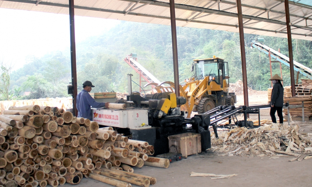 thanh hoa effectively implements industry promotion projects