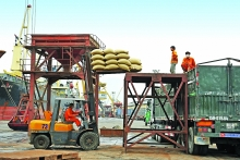 new market opportunities open up for vietnams rice exports