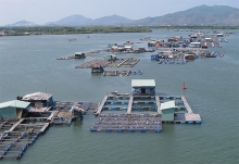 ba ria vung tau develops fishery infrastructure