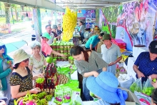 hanoi upgrades cooperatives