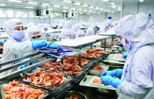 vietnams fruit seafood exporters up against tough australian rules
