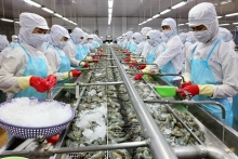vietnam posts export growth despite pandemic effects