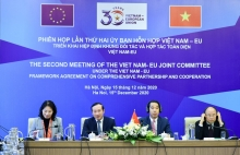 eu vietnam joint committee holds second meeting online