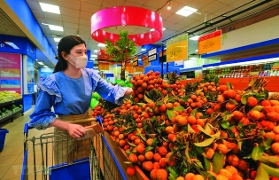 traceability stamp adds value to vietnamese produce exports