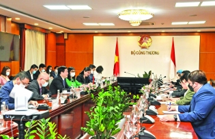 vietnam seeks solutions to facilitate trade with asean nations