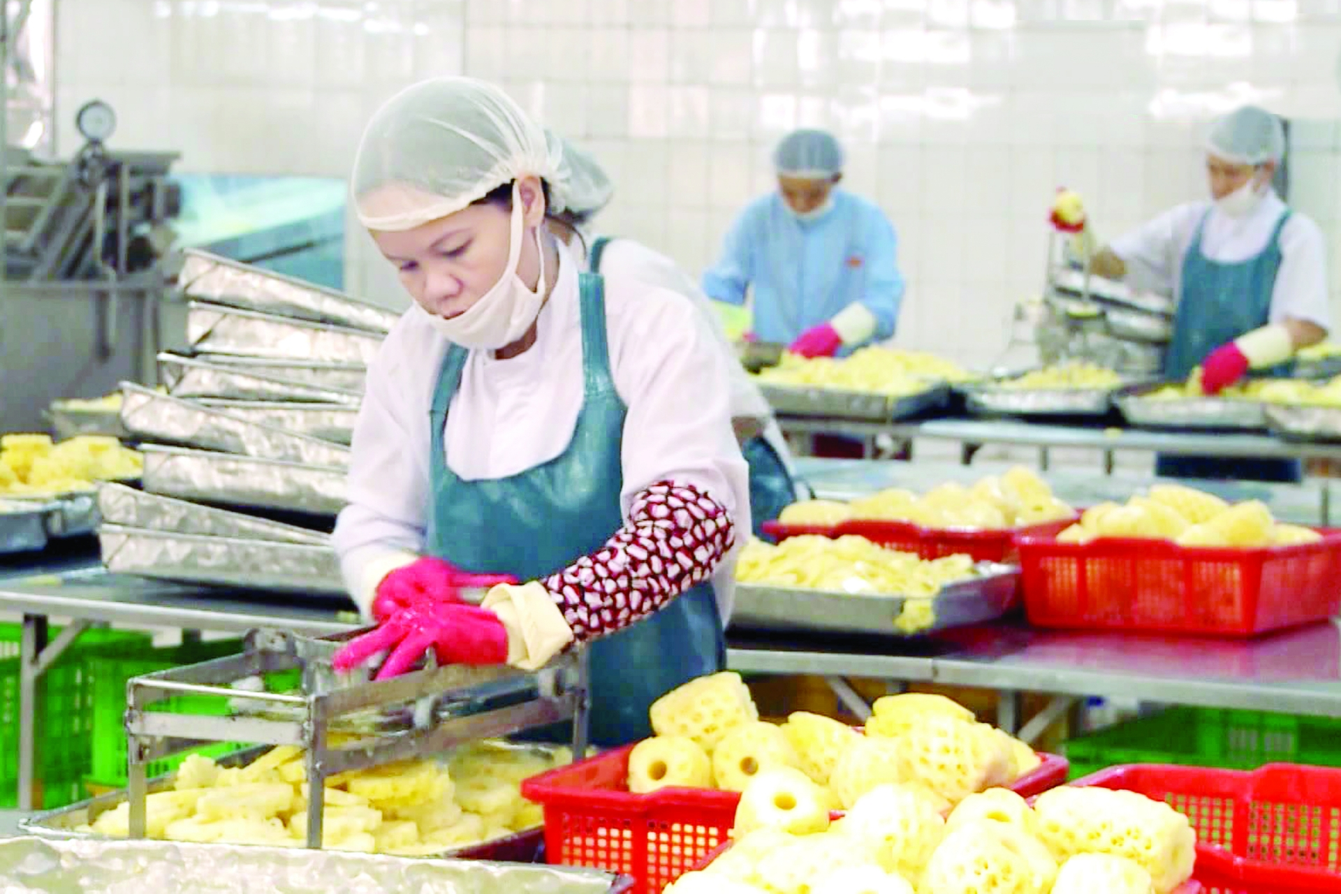 free trade deal boosts produce exports to russia