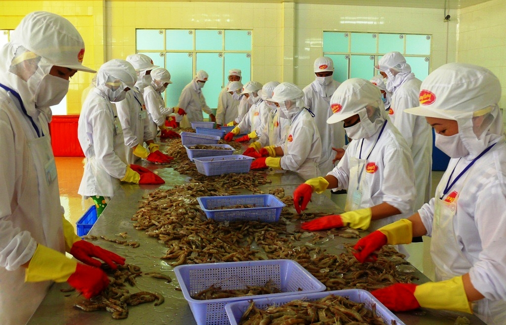 production recovery in mekong delta requires appropriate policies