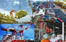 icaew vietnam is expected to be the only south east asian economy to record positive growth this year
