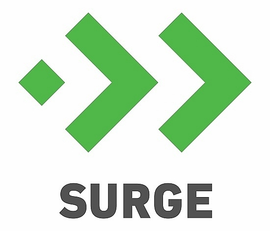 sequoia capital indias surge selects 17 startups who will thrive in a post covid world