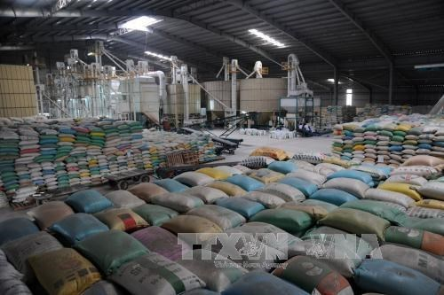 vietnam extends rice trade deal with philippines
