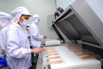 thai binh attracts many investment projects in agriculture