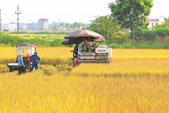 agricultural growth said to be fast but unsustainable